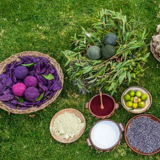 traditional dyes in the peruvian Andes at Cuzco Peru