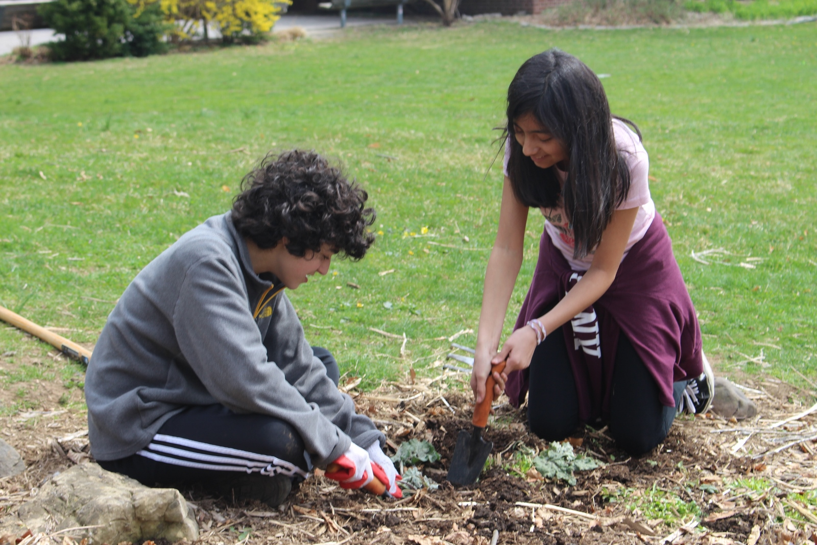 Earth Day 2019: In Service of the Earth - Waldorf School ...